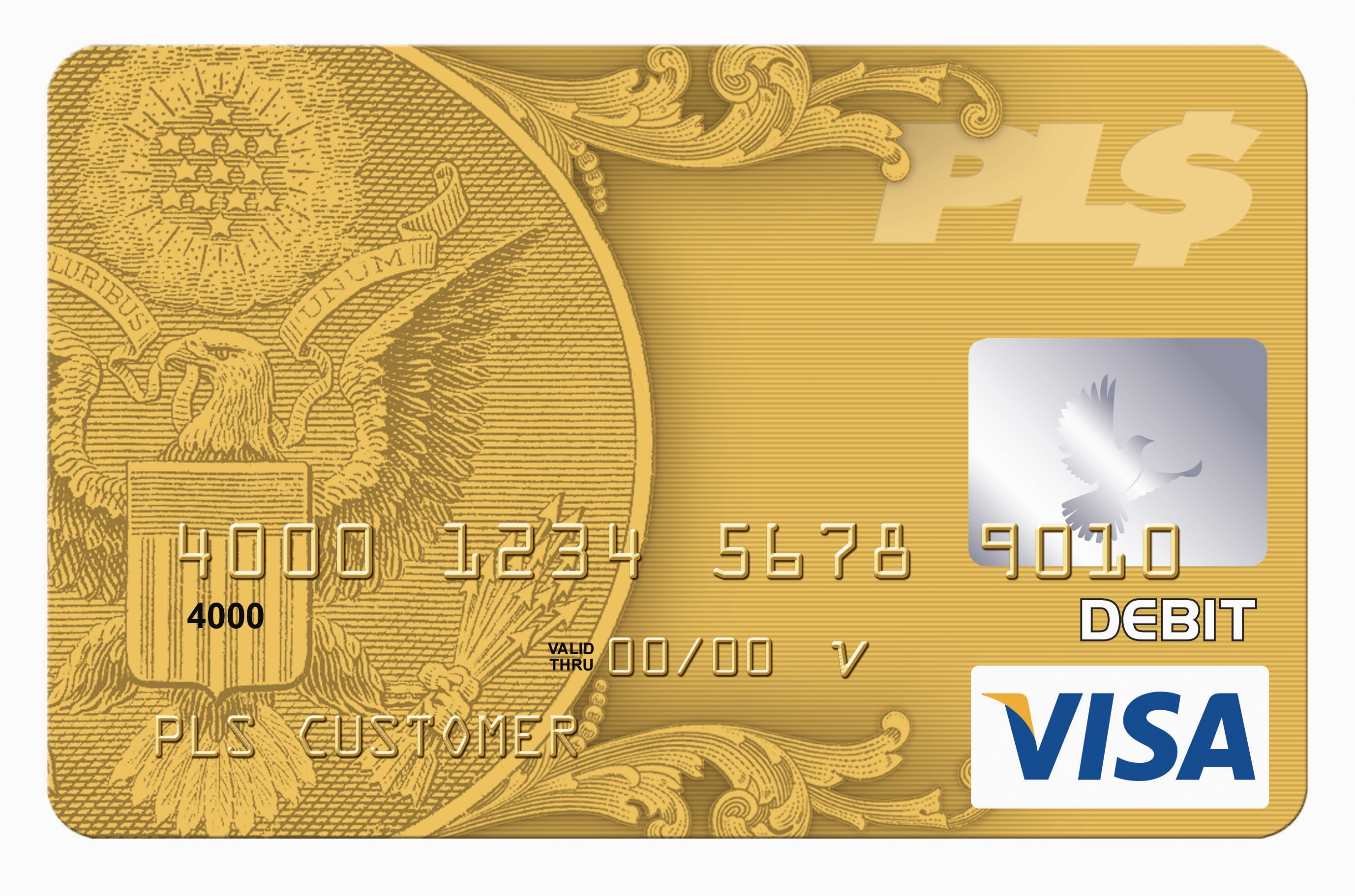 check money on Visa gift card photo - 1