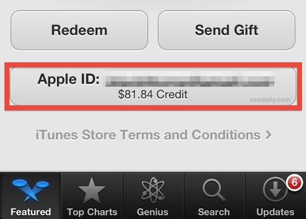 check apple store gift card balance photo - 1